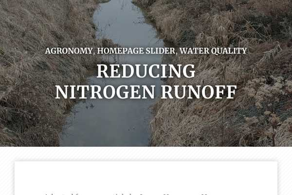 Reducing nitrogen runoff