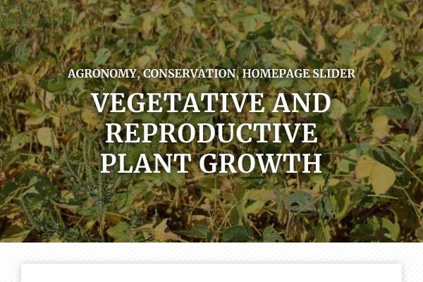 Vegetative and reproductive plant growth