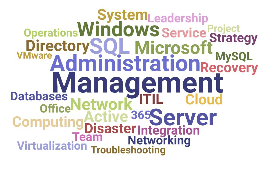 Top Information Technology Manager Skills and Keywords to Include On Your Resume