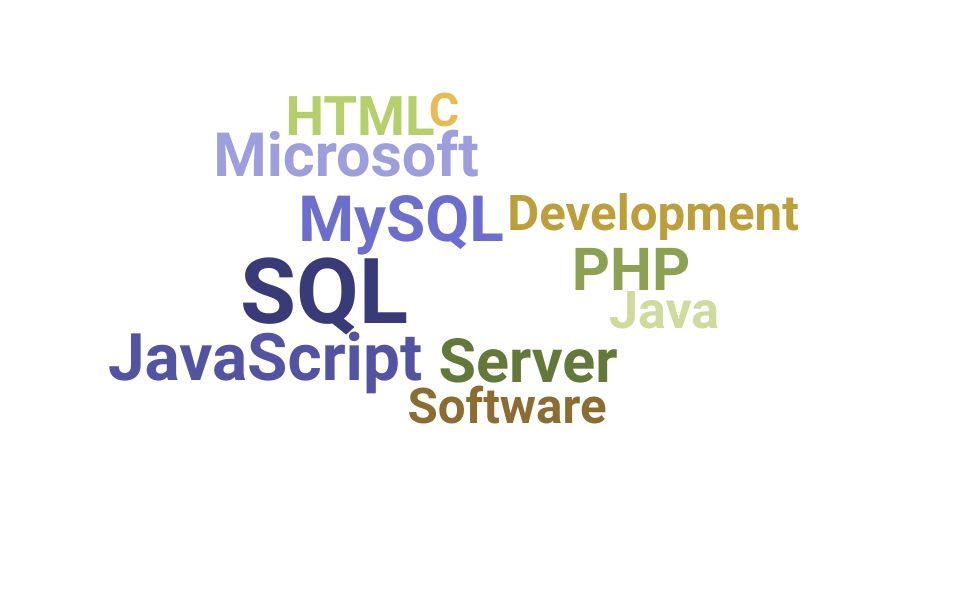 Top Information Technology Developer Skills and Keywords to Include On Your Resume